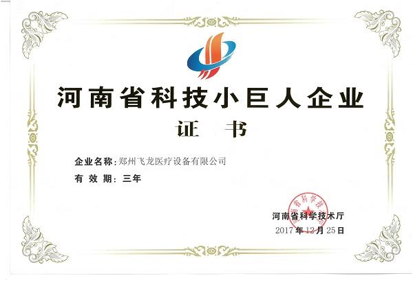 飞龙医疗荣获河南科技小巨人企业证书